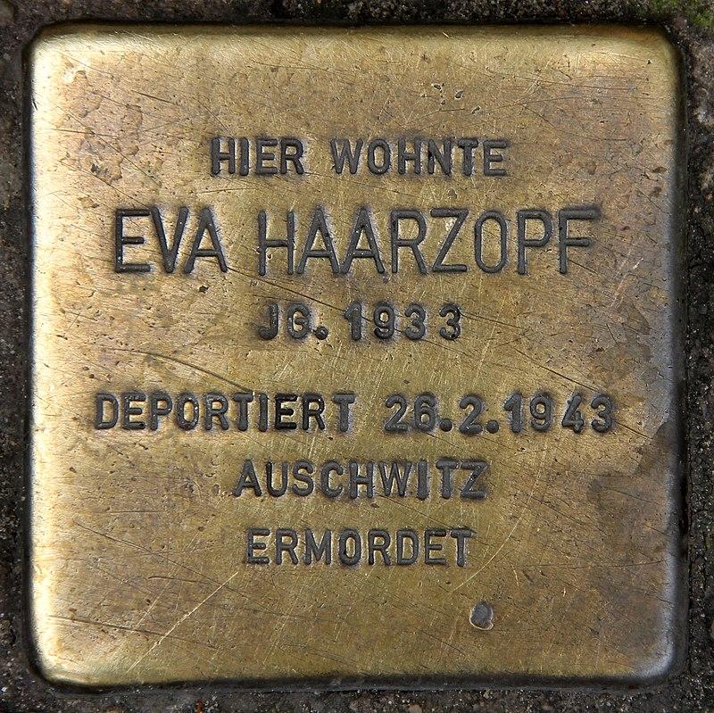 Stolperstein Schönhauser Allee 41 (Prenz) Eva Haarzopf.jpg