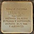 Stolperstein für Livija Blau (Lendava).jpg