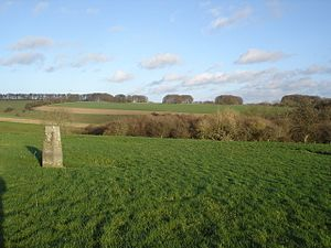Rotherley Downs - Rotherley Down