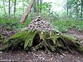 Stone pile near Togakushi.jpg