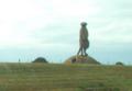 Straw meerkat near Nantwich - DSC09220.PNG