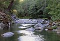 Streamside Views, Rogue River-Siskiyou National Forest (37110548945).jpg