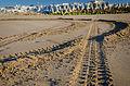 Sur la plage de Larache (14161873897).jpg