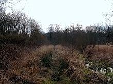 Дорога Википедия Свит Трек древняя дорога в Англии