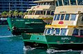 Sydney Ferry Supply and Collaroy.jpg