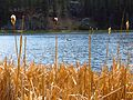 Sylvan Lake (8878886772).jpg