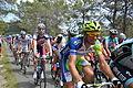 TDF2012 13e étape peloton 09.JPG