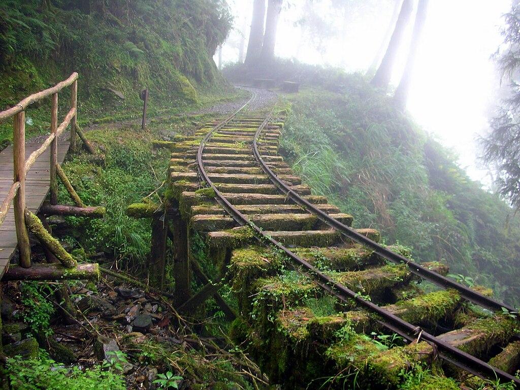 https://upload.wikimedia.org/wikipedia/commons/thumb/6/66/Taiping_Mountain_Forest_Railway_08.jpg/1024px-Taiping_Mountain_Forest_Railway_08.jpg
