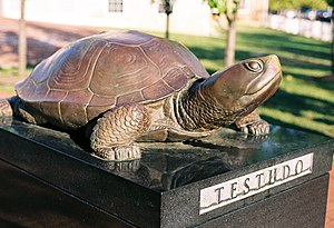 Diamondback terrapin - University of Maryland's testudo statue