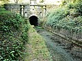 Thames and Severn Canal and Sapperton tunnel, near Tarlton - geograph.org.uk - 1517608.jpg