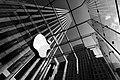 The Big Apple's apple - Flickr - sdh zh.jpg