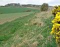 The Blebocraigs path - geograph.org.uk - 780905.jpg