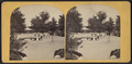 The Esplanade, from Robert N. Dennis collection of stereoscopic views 2.png