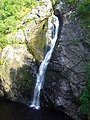 The Fall at Foyers - geograph.org.uk - 184794.jpg