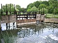 The Gates across the weir pool - geograph.org.uk - 446335.jpg
