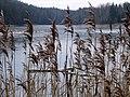 The Lake Ivande - panoramio.jpg