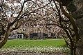 The Master's Garden - geograph.org.uk - 1240253.jpg