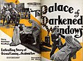 The Palace of Darkened Windows (1920) - 5.jpg