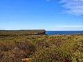 The Royal National Park Coast Track - panoramio (18).jpg