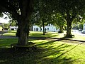 The Village Green, Bowden - geograph.org.uk - 1428413.jpg
