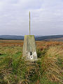 The trig point at Blackwool Law - geograph.org.uk - 589426.jpg