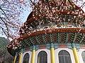 Tianyuan Temple 天元宮 - panoramio (5).jpg