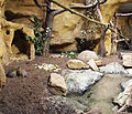 Tierpark Hellabrunn - cage.jpg
