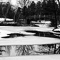 Toledo Botanical Gardens (4281858820).jpg