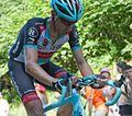 Tour de France 2013, voigt (14683158259).jpg