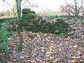 Townend of Threepwood ruins - detail.JPG