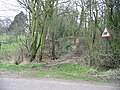 Track through the woods, Wheelbarrow Town - geograph.org.uk - 330435.jpg