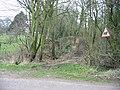 Track through the woods, Wheelbarrow Town - geograph.org.uk - 330435.jpg