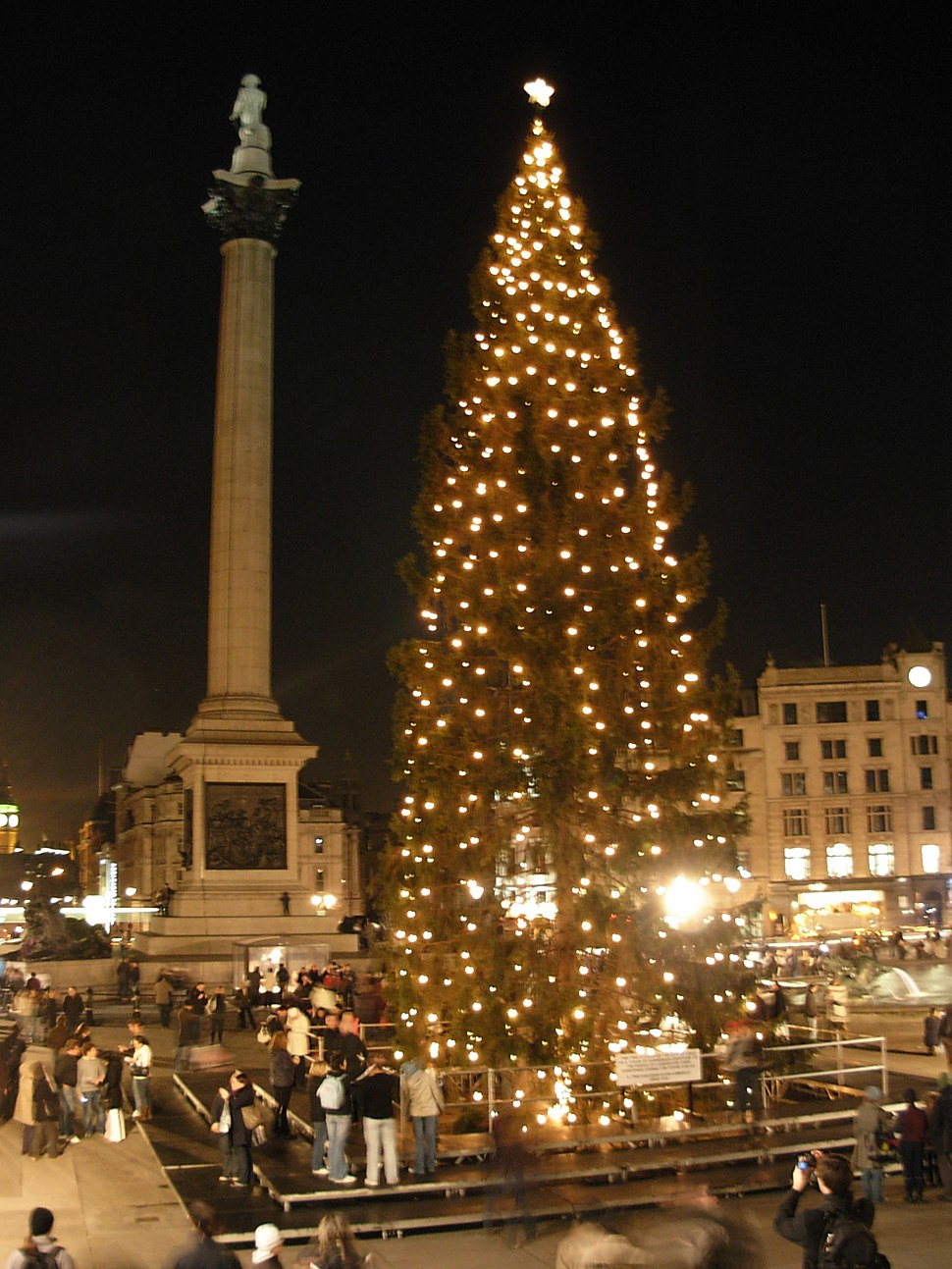 Trafalgar Square Christmas tree9