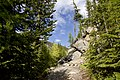 Trail (14333979489).jpg