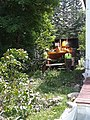 Tree Removal in East Haven VT July 2018.jpg