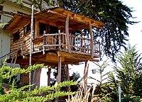 Maison arboricole