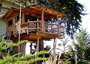 Elaborate kids' tree house