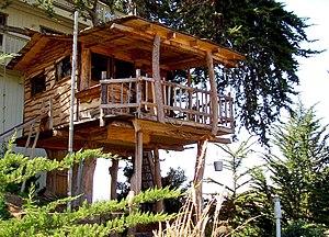 Casa Arbol Wikipedia La Enciclopedia Libre - Casas-en-los-arboles