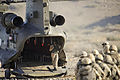 Troops Await Embarkation of a Chinook Helicopter MOD 45150890.jpg