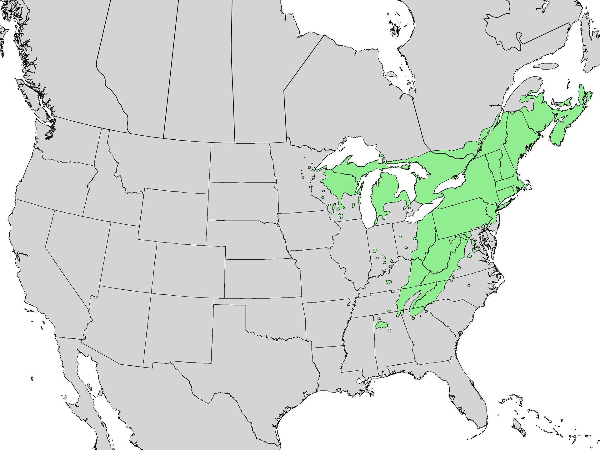 canadensis men Goldenseal (hydrastis canadensis),  where men with e coli induced diarrhea who had 42–48% reduced symptoms after taking berberine showed unchanged levels of.