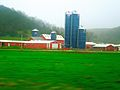 Turk Farm with Five Harvestore® Silos - panoramio.jpg