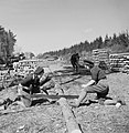 Two Land Army girls sawing timber into lengths for pit props at the WLA training centre at Culford, Suffolk during 1942. D14101.jpg