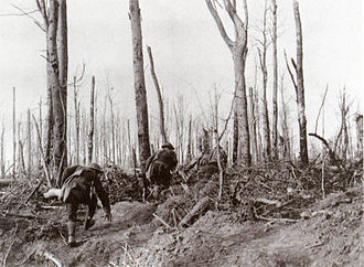 Meuse-Argonne Offensive - Image: U.S. Marines during the Meuse Argonne Campaign
