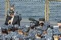 U.S. Secretary of Defense Leon E. Panetta, civilian clothes, speaks to Sailors aboard the U.S. 7th Fleet command flagship USS Blue Ridge (LCC 19) Oct. 26, 2011, in Yokosuka, Japan 111026-N-XG305-530.jpg
