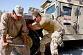 US Navy 071106-N-0553R-005 Iraqi enlisted soldiers, or Jundee, work with Construction Mechanic 3rd Class Michael Dembinski, assigned to Naval Mobile Construction Battalion (NMCB) 1.jpg