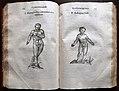 Ulisse aldrovandi, monstrorum historia, per nicola tebaldini, bologna 1642, 159 ermafrodito e androgino.jpg