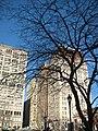 Union Square Tree (8403670357).jpg