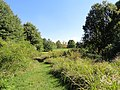 University of Kentucky Arboretum - DSC09351.JPG