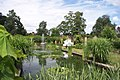 University of Leicester Botanic Garden pond.jpg