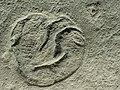 Unknown Ediacaran biota(未知のエディアカラ生物)40mm 2.jpg